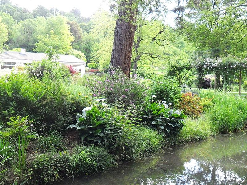 Allo jardin service paysagistes au service de votre jardin for Entretien jardin angouleme